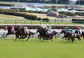 JRA皐月賞(G1)美浦イチ「持ってる馬」って? 「暴走懸念」の存在も? 関係者情報を一挙公開