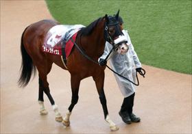 【青葉賞(G2)展望】JRA「日本ダービー重要前哨戦」に素質馬集結! 令和最初の大舞台「切符」を手にするのは