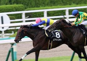 JRA大阪杯(G1)エアウィンザー「武豊→浜中俊」がプラスな理由。角居勝彦調教師「不気味発言」で逆転十分