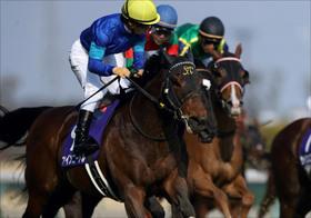 「競馬ファンよ、これが本物の情報だ」競馬関係者も唸る秘蔵の極秘ネタを一挙公開!高松宮記念の超穴馬はコレ!