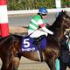 JRA皐月賞(G1)サートゥルナーリア状態は? 栗東関係者が語る「おすすめ馬」に注目