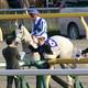 JRA重賞5勝「F.ベリー騎手引退」日本でも馴染み深い騎手が落馬負傷で......