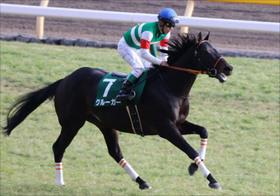 JRA「ウィンクス連勝ストップ」へクルーガーが挑戦!? 世界最強牝馬の一角に「不運の馬」が挑む!