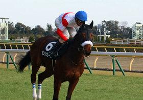 JRA福島牝馬S(G3)は「大荒れ馬券」で天皇賞・春の軍資金? 強気「関係者情報」で狙い撃ち
