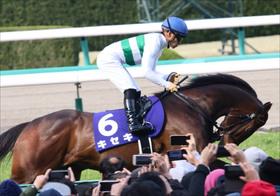 JRAキセキ「凱旋門賞登録へ」川田将雅「因縁のレース」挑戦は