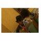 内田裕也お別れの会、田代まさしが参列…主催者がテレビ各局に取材自粛要請で厳戒ムード