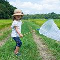 日本人、絶滅危惧5人種のトップ?農薬大量使用による昆虫減少が人類に与える甚大な被害