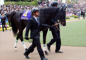 JRA美浦関係者「耳寄り情報」日本ダービー(G1)5頭独占情報をゲット! あの素質馬の状態は......