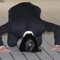"""""""土下座謝罪""""田口淳之介、KAT-TUN時代の無礼と腹黒…そのKYぶりをファンが激白"""