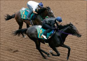 競馬のバイブルここにあり!鈴木和幸氏が競馬記者歴45年の知識を開放する。鈴木和幸の競馬解説~調教編その2~