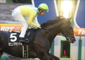 JRA最強牝馬ウオッカの仔タニノフランケル「覚醒」4馬身差圧勝!17冠ベビーの世界的良血馬に「サイレンススズカ2世」襲名
