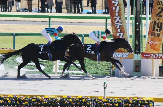 怪物エピカリス&武豊アディラートの最強コンビが出陣!日本馬にチャンス大のUAEダービー(G2)展望の画像1