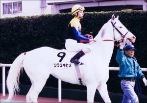 竜王×白雪姫!? 注目の白毛馬ハウナニはレースでもファンを魅了?