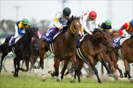 天才・武豊を見限ったレジェンドは正しかった!競馬界で異彩を放つプロ予想家集団の画像1