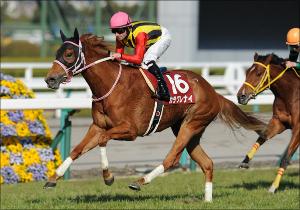 NHKマイルC、大波乱で特大万馬券の可能性...注目すべきは人気急落中の「あの馬」
