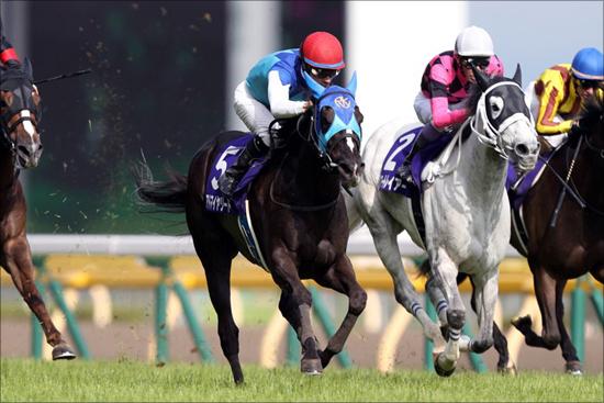 獲得賞金21億円、大魔神・佐々木主浩の驚異的な馬主成績...ヴィクトリアマイルの勝負馬は?の画像1