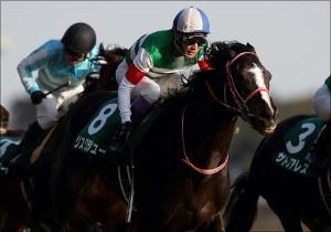 武豊、復帰レースで渾身の騎乗を見せるか!?ヴィクトリアマイルの「狙い馬」はコレ!