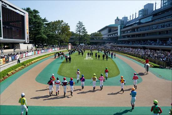 安田記念、過去20年で1番人気馬はわずか5勝の衝撃...今年も有力馬に不安要素が浮上の画像1