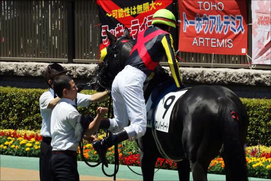 JRA競馬関係者の事件簿アレコレ。ダービージョッキー、競馬関係者達の黒歴史を振り返る。