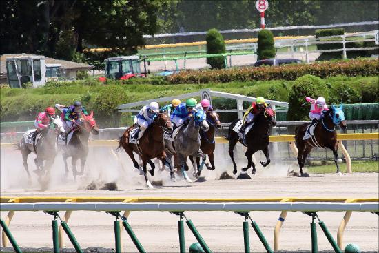 中野省吾「JRAではなくマカオ」騎手復帰で「競馬界のホリエモン・本田圭佑」爆誕!? 興味があるのは「ビジネス」も