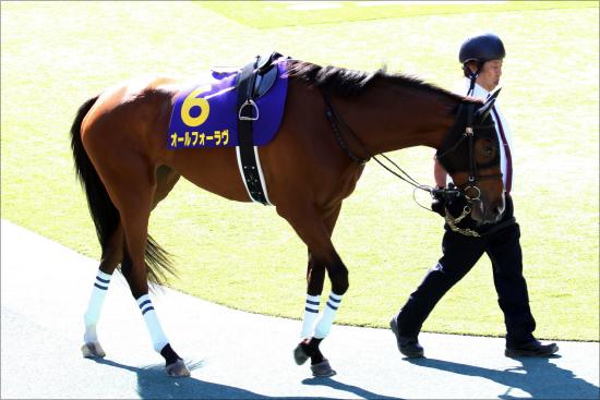 JRA秋華賞(G1)は「影のディープインパクト産」を狙え? 「非ノーザンファーム」馬の成長力に期待