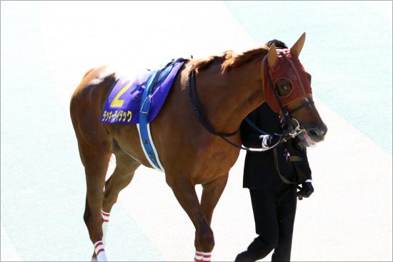 【秋華賞(G1)展望】JRA牝馬3冠へアーモンドアイの状態は!? 武豊カンタービレ、ラッキーライラックが逆転狙うの画像2