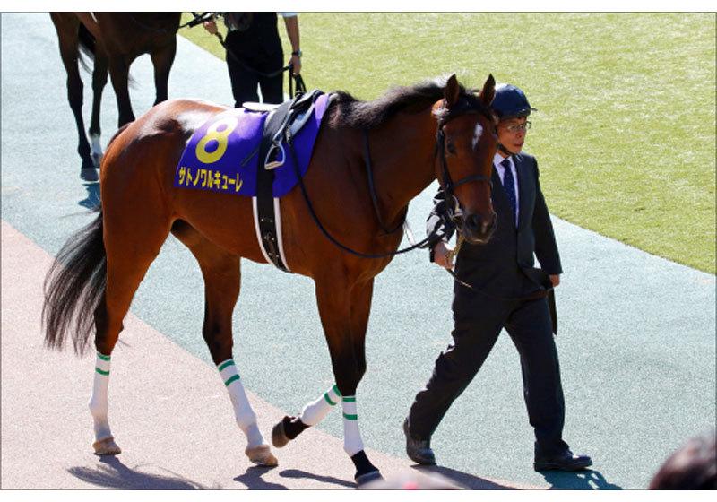 JRA金鯱賞(G2)サトノワルキューレ「復活」なる? 「アーモンドアイ倒す馬」触れ込みを現実に......