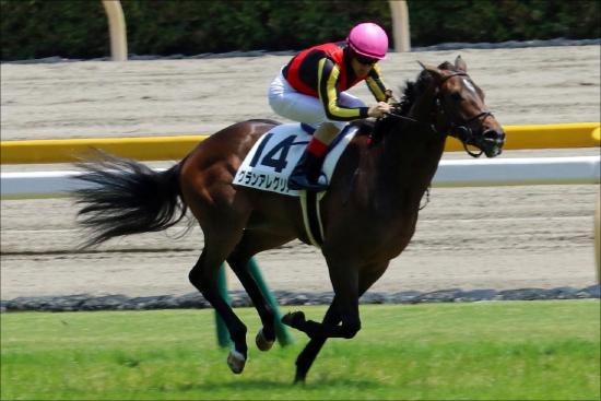JRA朝日杯FS(G1)グランアレグリア「敵」はアーモンドアイ!? 牡馬相手にジャパンC圧勝の最強女王が見せる幻影の画像1