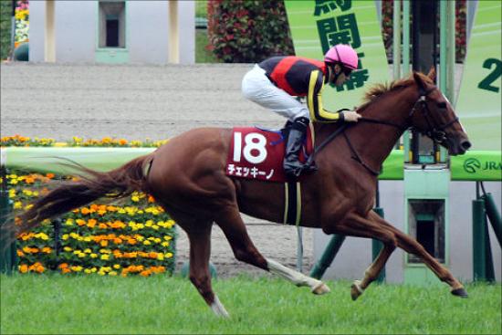 JRA「元牝馬クラシック有力」チェッキーノ復活へ! 2年ぶりのレースで「能力」見せられる?の画像1