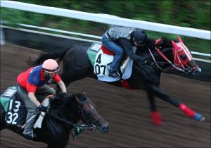 「ゴールドアクターとサトノクラウンは減点」「キタサンブラックは...」鈴木和幸が見極めた宝塚記念出走馬11頭の最終追い切り診断を公開中!