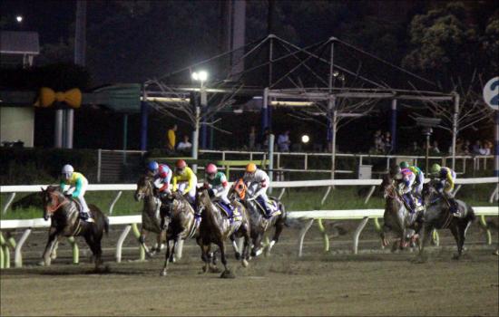 地方競馬の祭典・JBC競走が完全にJRAと「一体」化!? 巧みな発走時間のコントロールで今年の「文化の日」は朝から晩まで馬券を買える「競馬の日」?