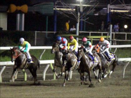 【TCK女王盃(G3)展望】JRAプリンシアコメータVS大井の女王ララベルが再び一騎打ち!注目の