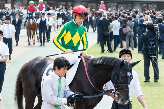 JRAきっての「ドS貴公子」川田将雅騎手のメンタルが心配......悪質な肘打ちに耐え、フォワ賞敗戦で濡れ衣を着せられた「忠犬」は今、何を思うの画像1
