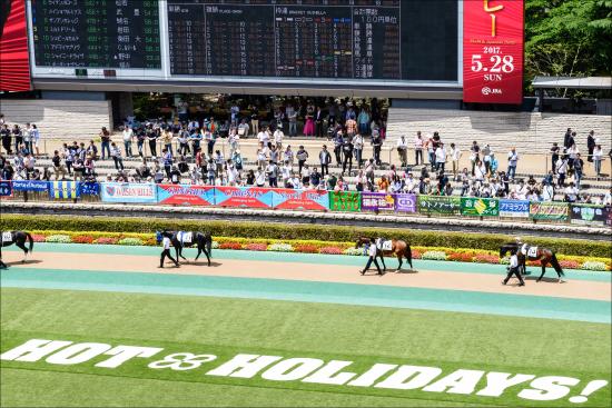 JRA和田竜二騎手、ファンへの「神対応」に大絶賛! 競馬界きってのお祭り男は中身もイケメンの画像1