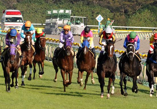 サブちゃん、マカヒキ金子など日本の金持ちが集結! 秋の東京開催で気合いが入る500名の東京馬主関係者には大物がズラリ