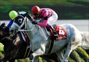 北島三郎、競馬でも大儲け...キタサンブラックの獲得賞金総額、驚愕の15億円!