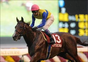 エアスピネルが1週前追い切りで好時計!「新マイル王」襲名に向け、難敵揃いの東京新聞杯(G3)は試金石の一戦
