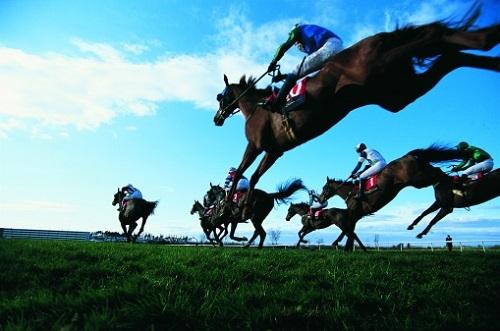 元JRA馬が「世界最高賞金レース」に登場!  上り調子でまさかの「日本馬初代王者」もある?の画像1