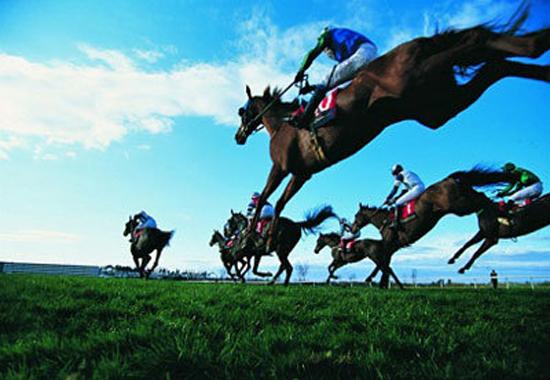 【新潟記念(G3)展望】新潟・夏競馬の締めくくり!重賞馬だけではなく思わぬ伏兵も存在の混戦レースを制するのは誰だ!!の画像1