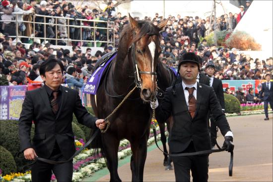 JRA賞年度代表馬キタサンブラック当然も、まさかの「大ブーイング」が!? 「満票」を逃した「あの馬」に疑問多数の画像1