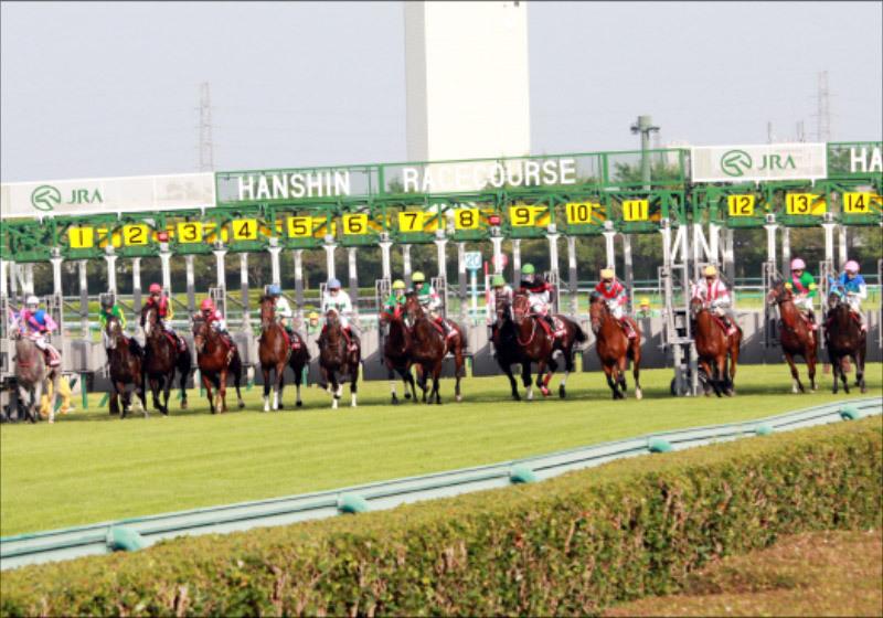 JRA競馬中継「スタート音」はニセモノだった!? いつもの『ガッシャン!』もゲート開かず......戸崎圭太騎手たまらず落馬の画像1