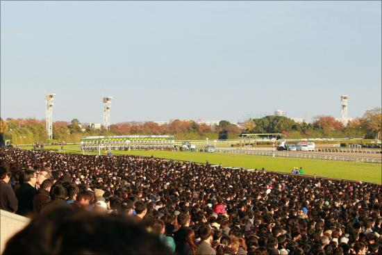 有馬記念「サイン」安室奈美恵・引退であの「爆穴馬」が急浮上!? 大本命「北」キタサンブラックが