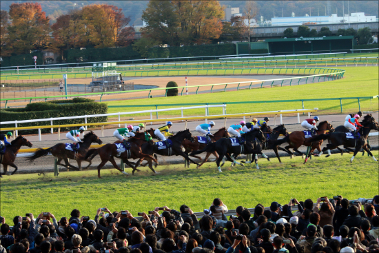 JRA「勝てない騎手」が名門・池江泰寿厩舎所属で大出世!? 裏には競馬界の現状と「救いの手」が......