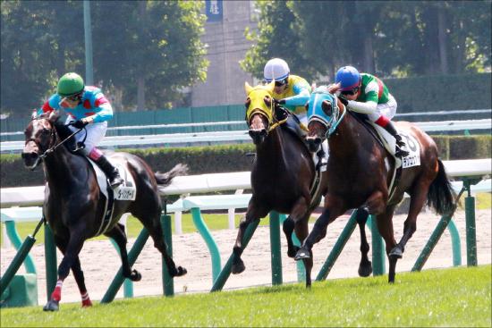 JRA 「競馬は社台・ノーザンだけじゃない!」 日高生産馬にこだわる頑な男の画像1
