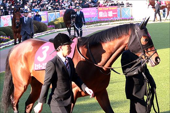 JRAジャパンC(G1)外国馬が「超順調」? サトノクラウンら美浦情報と合わせて紹介