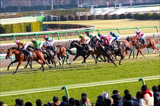【中山牝馬S(G3)展望】波乱の要素を多分に含むハンデ戦!トリッキーな中山コースを制するのは勢いか実績か?