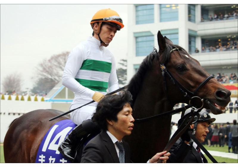 JRA大阪杯(G1)キセキ「有馬燃え尽き」惨敗でパワーアップ!? 距離不安説も「2000mの方がいい」