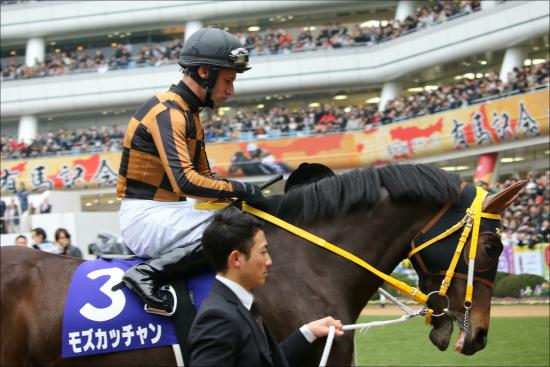 JRA和田竜二「再コンビ」金鯱賞(G2)モズカッチャンの「能力」はどれほど?の画像1