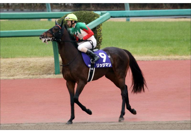 JRA阪神大賞典(G2)新マラソン王リッジマンに大チャンス。3000m以上「100%連対」で確実?