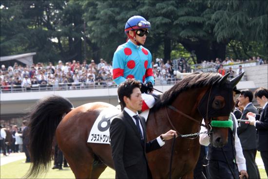 JRA菊花賞最有力へ「ニックス」も後押し?......ブラストワンピースが新潟記念「大圧勝」